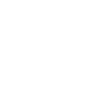Reconnective Healing Logo